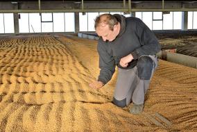 Организация хранения зерна - Большая ревизия