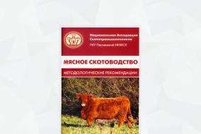 Обложка «Мясное скотоводство: Методологические рекомендации»