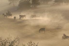 Рай на земле - Ботсвана, Дельта и пустыня