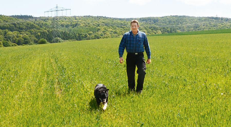 Выбор стратегии хозяйствования - Фермер накурорте