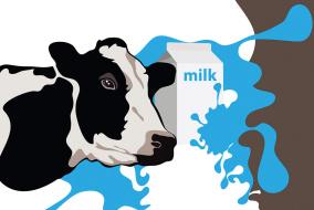 Контроллинг на молочном предприятия