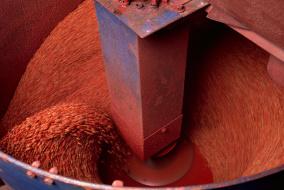 Защита семян является одной из важных предпосылок рентабельного выращивания озимых зерновых