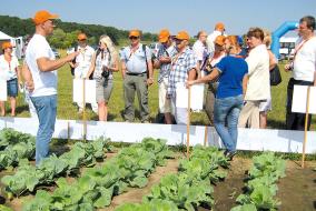 «Сингента» в очередной раз представила широ- кий ассортимент своих гибридов овощных культур и средств защиты