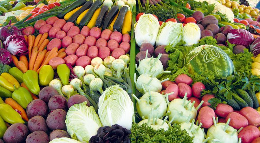 Агрофорум «Картофель и овощи – 2014», организованный группой компаний «Дмитровские овощи»