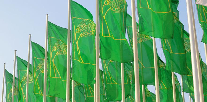 Какое все зеленое…