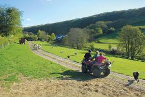 Овцеводство по-валлийски