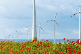 Дания поставила мировой рекорд развития возобновляемых источников энергии: 40% произведенной электроэнергии в2014году было получено наоснове ветрогенерации.