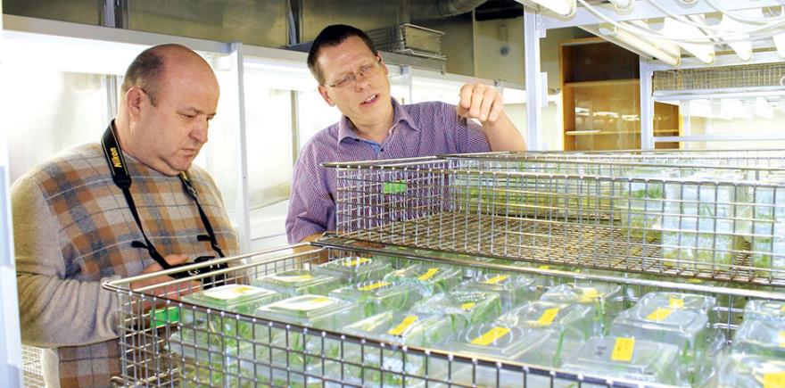 Посещение лаборатории Исследовательского Центра Carlsberg запомнилось победителям конкурса больше всего.