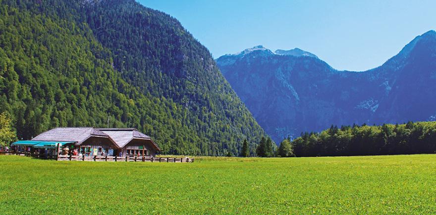 Отдых, обучение иностранному языку и... сельскохозяйственная практика? Можно ли в сжатые сроки совместить приятное с полезным?