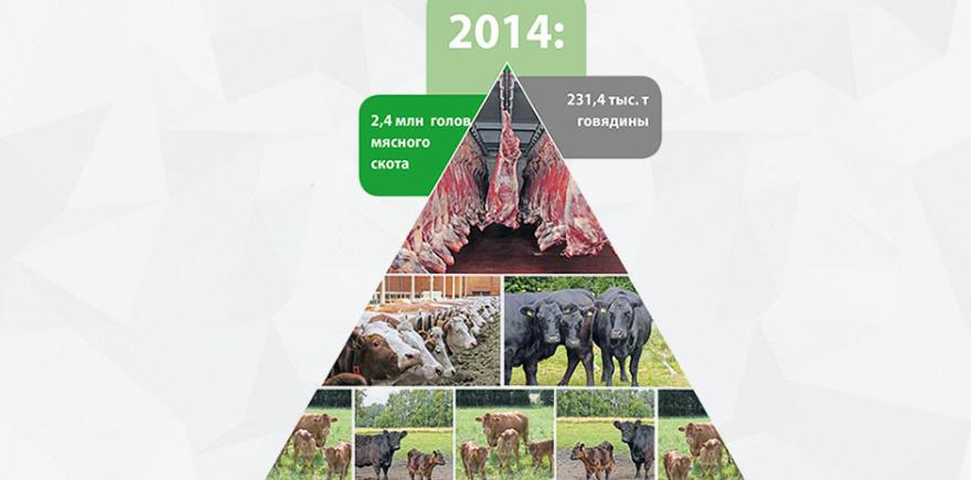 Международная промышленная академия стала уже привычным местом для встречи мясных «отраслевиков».