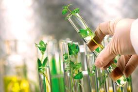 Технологии определения последовательности ДНК в геноме новых поколений растений развиваются все быстрее. @ Фото: Fotolia/photoХpress.ru, Hartung, landpixel
