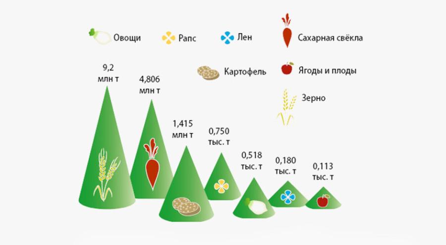 Плановые объемы производства в Белоруссии в 2016 г. @ Дизайн: НСХ