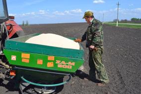 Основной объем азотных удобрений в нашей стране вносится под сахарную свёклу, а вот зерновые культуры удобряются только на трети площадей. @ Фото: И. Зайцева
