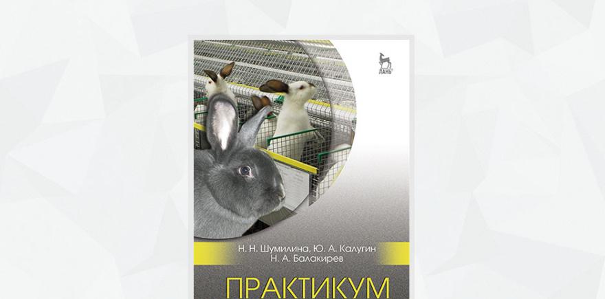 Издательство «Лань»