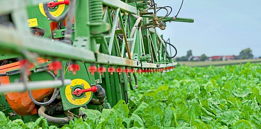 Фото: agrarfoto.com