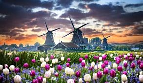 Фото: Adobe Stock