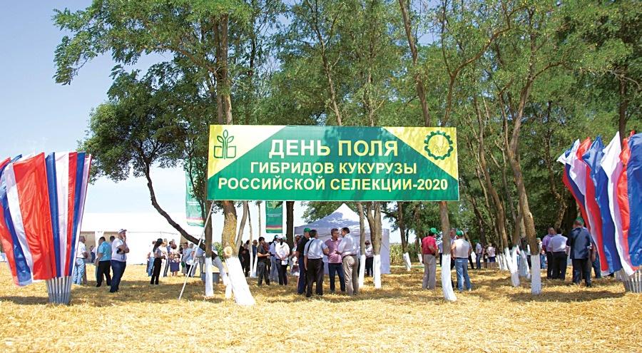 Фото: И. Зайцева